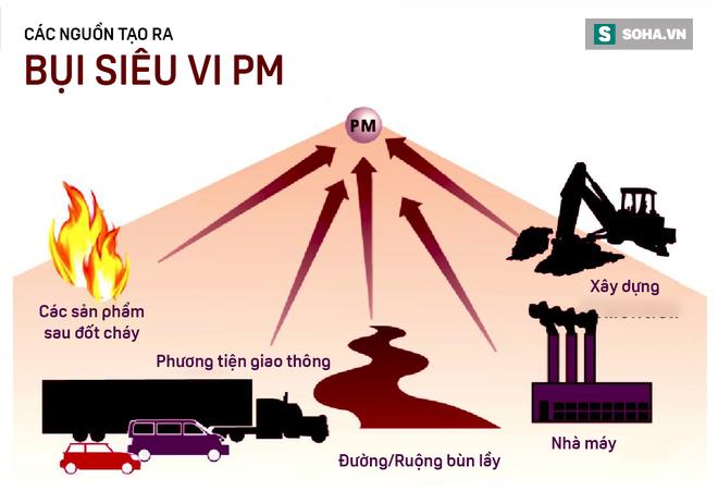 Hà Nội vào top 10 thành phố ô nhiễm không khí tệ nhất TG: Bụi PM2.5 xâm nhập vào máu ra sao? - ảnh 5