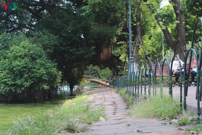 Ảnh: Đường dạo quanh hồ Hoàn Kiếm sụt lún mất an toàn - Ảnh 13.