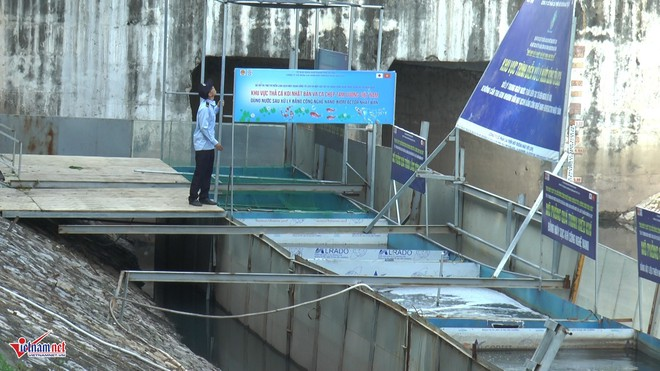 Camera canh giữ ngày đêm, cá koi Nhật vẫn chết trên sông Tô Lịch - Ảnh 6.