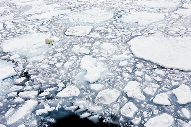 Nóng lên toàn cầu và biến đổi khí hậu: Giống nhau hay khác nhau - Ảnh 1.