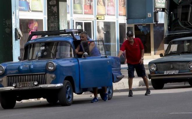 Thiếu xăng dầu trầm trọng, Cuba phải dùng bò kéo thay máy cày