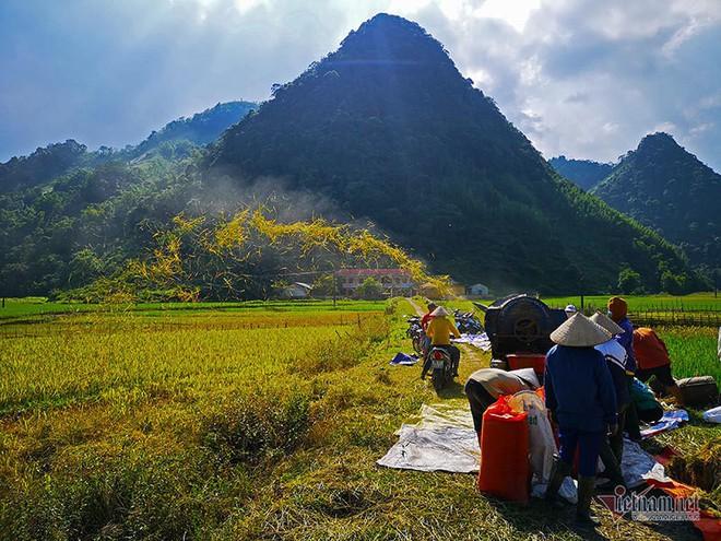 Cảnh sắc đẹp nhất thế giới mỗi năm 1 lần chỉ có ở Việt Nam - Ảnh 14.