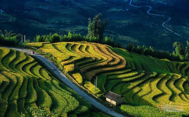 Cảnh sắc đẹp nhất thế giới mỗi năm 1 lần chỉ có ở Việt Nam - Ảnh 6.