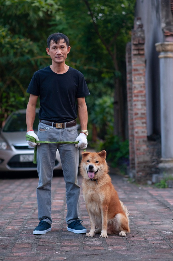 Phim Cậu Vàng chính thức chọn ra 3 chú chó làm diễn viên chính, chó Nhật sẽ đảm nhận những cảnh tâm trạng - Ảnh 1.