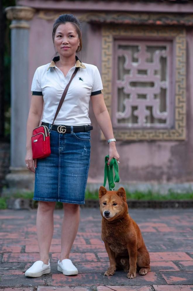 Phim Cậu Vàng chính thức chọn ra 3 chú chó làm diễn viên chính, chó Nhật sẽ đảm nhận những cảnh tâm trạng - Ảnh 2.