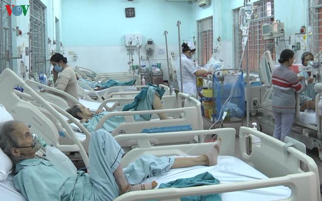 Ít nhất 9 người nhập viện do ong đốt tại Đồng Nai - Ảnh 1.