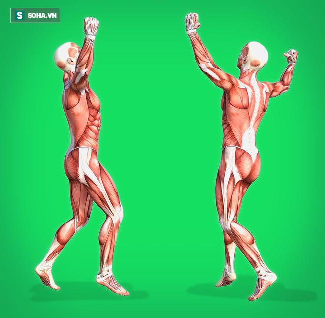 6 bài tập tốt nhất để trẻ hóa, giúp cơ thể bền mãi với thời gian: Bạn đã tập thử chưa? - Ảnh 1.