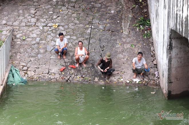 Cần thủ vây kín khu làm sạch của chuyên gia Nhật trên sông Tô Lịch - Ảnh 12.