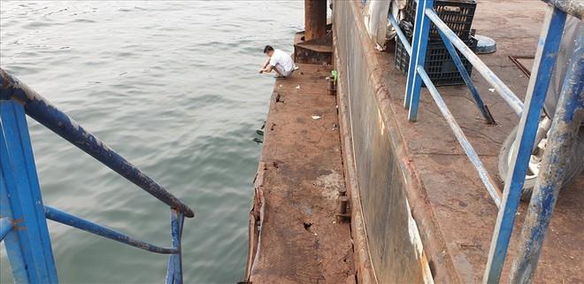Cảng trăm tỉ Vinashin Hòn Gai nham nhở cột bê tông, thành nơi... câu cá - Ảnh 8.