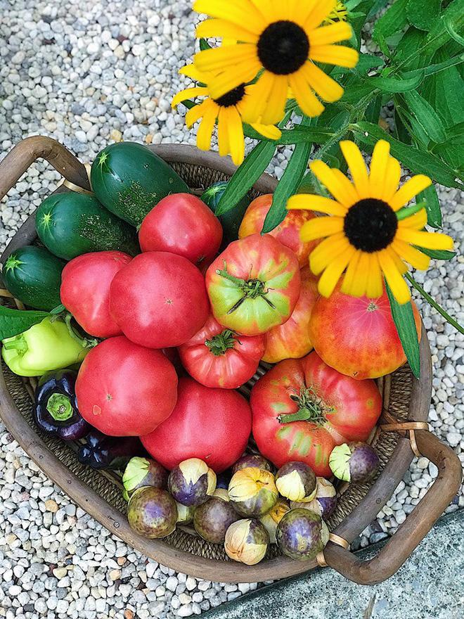 Gặp cô giáo xinh đẹp yêu làm vườn, thích nấu ăn và giấc mơ được trồng rau quả sạch suốt cuộc đời - Ảnh 21.