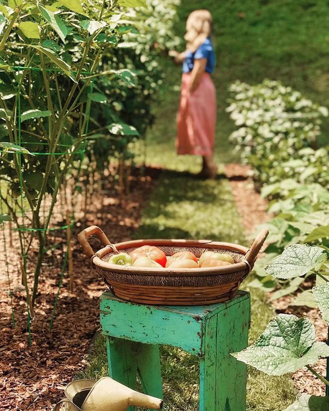 Gặp cô giáo xinh đẹp yêu làm vườn, thích nấu ăn và giấc mơ được trồng rau quả sạch suốt cuộc đời - Ảnh 10.