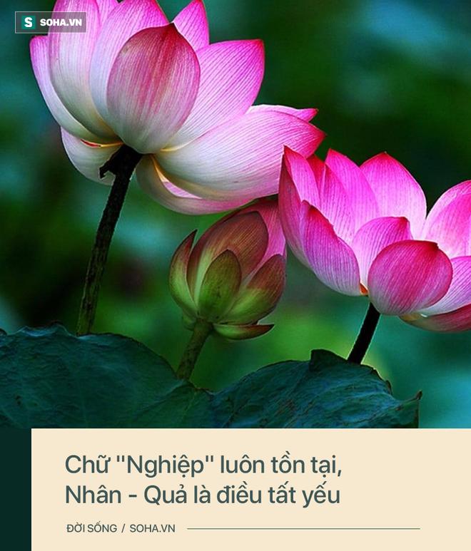 Đức Phật nói có 3 quy luật trên đời ai cũng cần thấu tỏ, lĩnh hội được tất sẽ sống an yên - Ảnh 3.