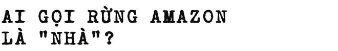 Đừng giết Amazon: Từ lá thư của thủ lĩnh da đỏ đến nguy cơ Amazon tự tử đều rất xúc động - Ảnh 9.
