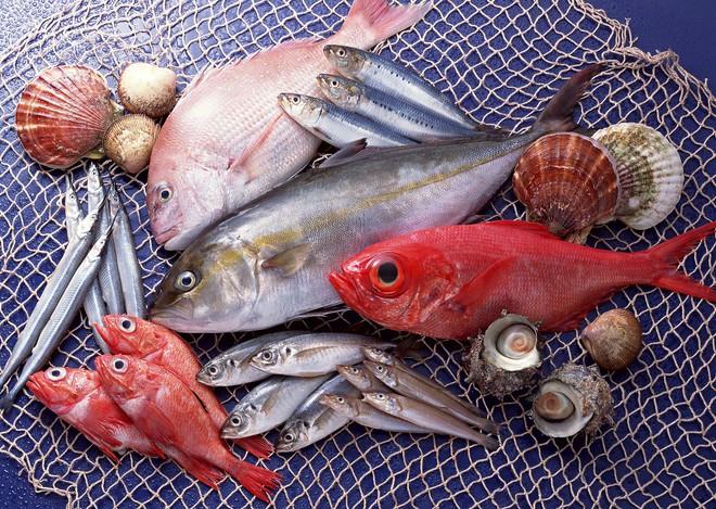 Những loại cá chứa lượng thuỷ ngân rất cao bạn phải dè chừng khi ăn - Ảnh 4.