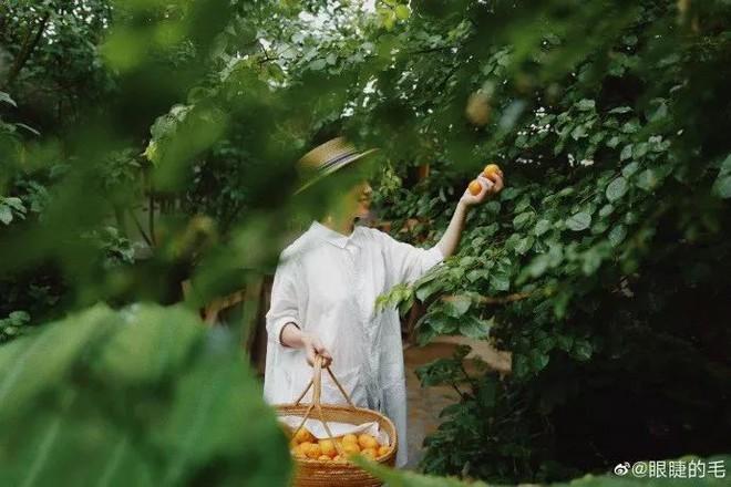 Cô gái trẻ bỏ ra 1,3 tỷ đồng cải tạo đất, mua giống hoa, biến sân nhà thành khu vườn đẹp lung linh - Ảnh 21.