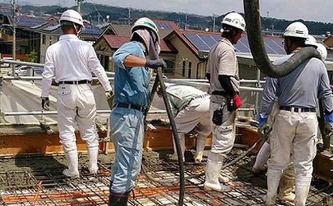 XHCN Việt Nam - Người Việt HCM ăn cắp  Photo1546483218500-1546483218782-crop-15464832236772055731133