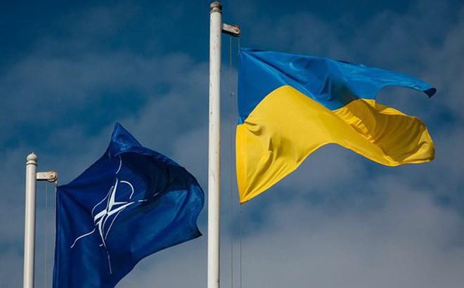 Chính khách Đức giải thích tại sao Ukraine không được phép vào NATO