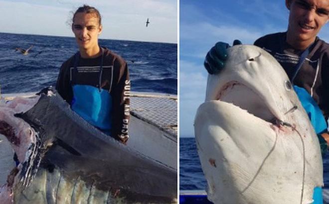Ngư dân vừa câu được cá mập thì bị 'thủy quái' từ đâu đến giành mất luôn một nửa