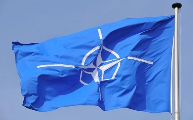 Nghị sỹ Đức kêu gọi giải thể NATO do lo ngại đe dọa an ninh thế giới
