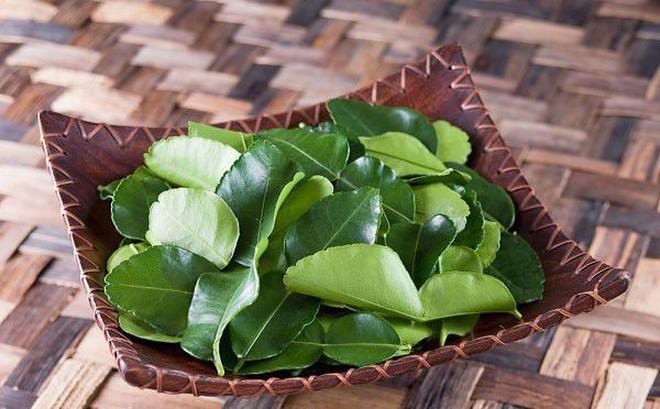 Lá chanh ở Việt Nam chỉ để ăn với thịt gà luộc, sang châu Âu bán 6,3 triệu đồng/kg