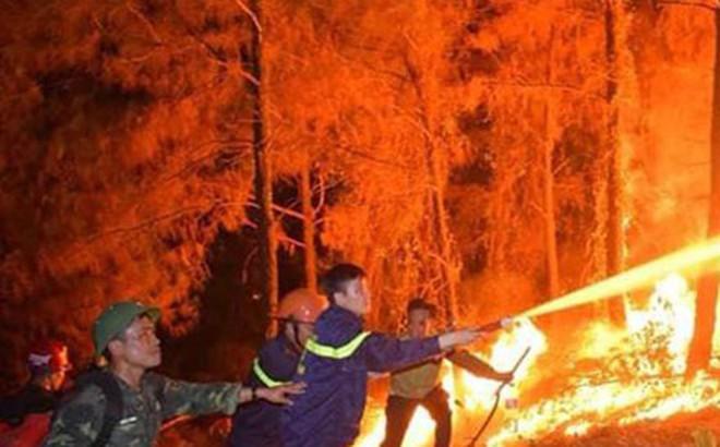 Chủ nhà hàng mang cơm, nước uống miễn phí cho lực lượng chữa cháy rừng