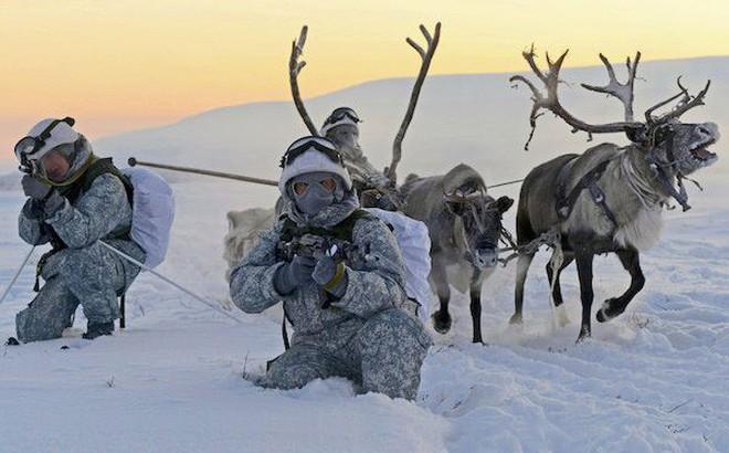 Đại chiến Bắc Cực – Kịch bản nào có thể xảy ra?