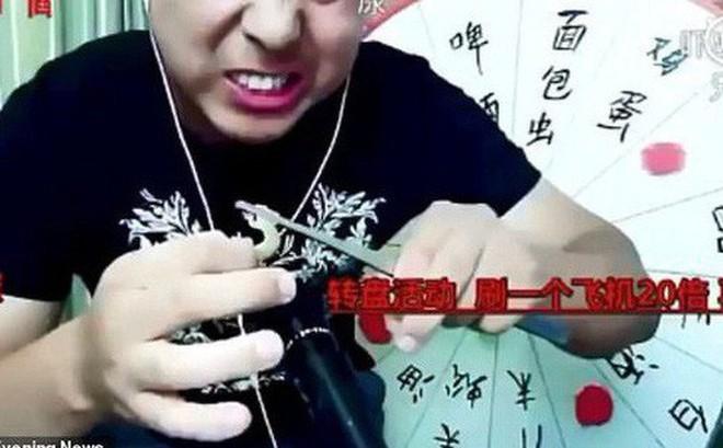 Livestream ăn thằn lằn sống, rết độc để câu view, thanh niên Trung Quốc chết thảm khi vẫn đang phát trực tiếp
