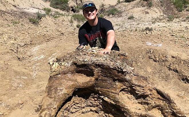 Phát hiện chấn động về hộp sọ khủng long có niên đại tới 65 triệu năm
