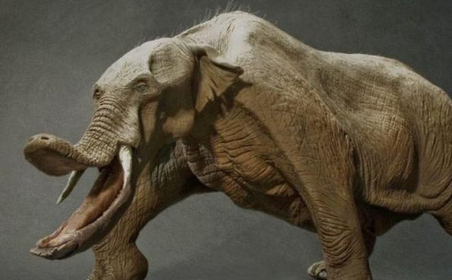 Có thể bạn chưa biết, tổ tiên của voi và tê giác cổ đại có vẻ ngoài 'quái dị' hơn ngày nay nhiều!