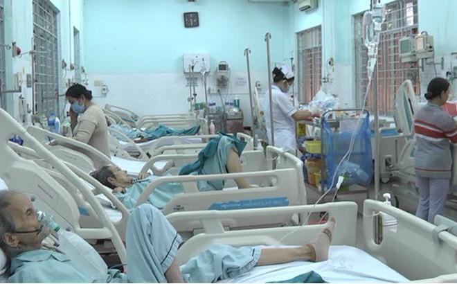 Ít nhất 9 người nhập viện do ong đốt tại Đồng Nai