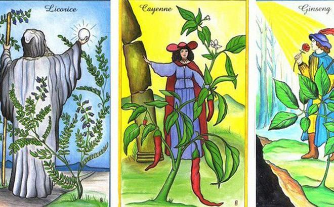 Rút 1 lá bài Tarot để biết may mắn và cơ hội nào sẽ ập đến với bạn trong tuần này