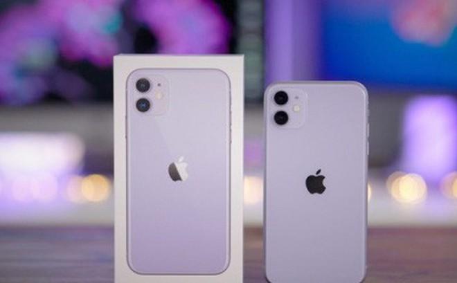 iPhone 11 xách tay giảm giá 'sốc', về dưới 20 triệu đồng
