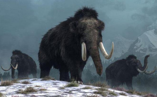 Phát hiện bất ngờ về hố bẫy voi ma mút đầu tiên trong lịch sử loài người