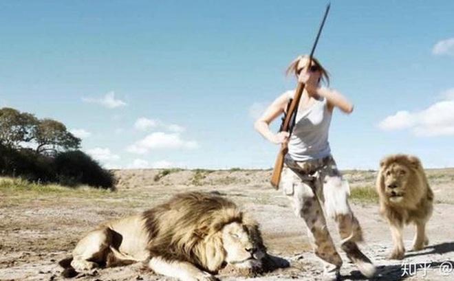 Điều gì sẽ xảy ra nếu tất cả các loài động vật trên Trái đất quay lưng phản kháng lại con người?