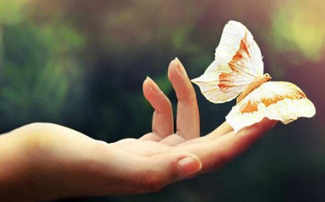 Phong thủy lớn nhất đời người đều tích tụ trong 6 đức tích quý giá này: Thuận lợi hay trắc trở, vận mệnh đều do một tay ta tự quyết!