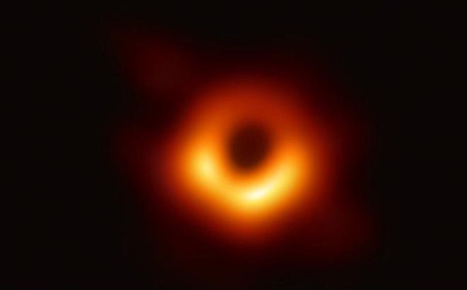 Mê hồn những bức ảnh về thế giới khoa học năm 2019