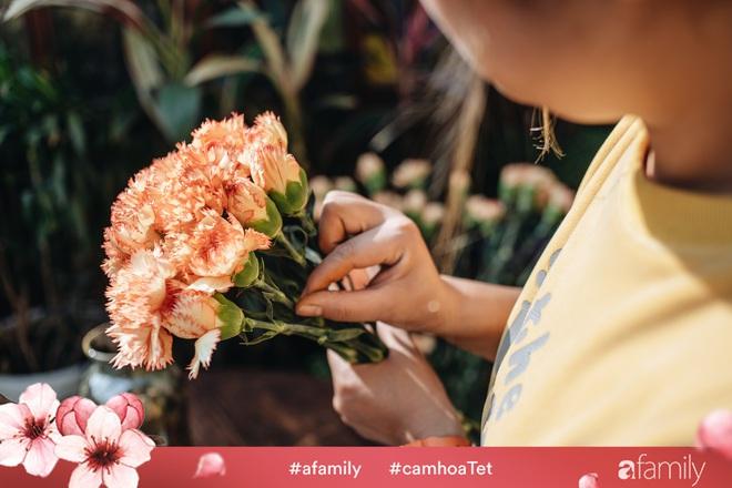 Vừa dễ cắm lại vừa đẹp, hoa cẩm chướng chính là loại hoa không thể thiếu trong ngày Tết - Ảnh 12.