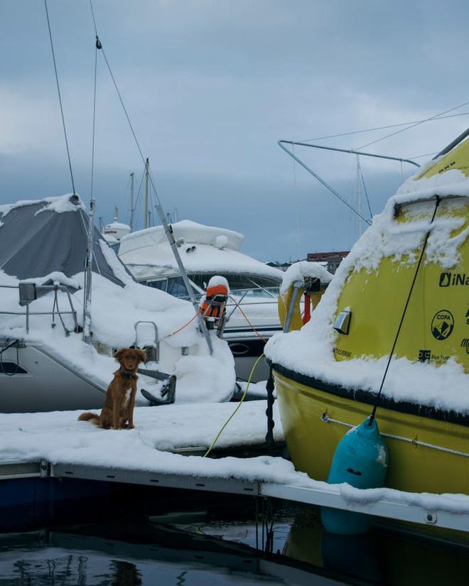 Hai kiến trúc sư đã tái chế một chiếc xuồng cứu sinh cũ và đang sử dụng nó để khám phá Bắc Cực cùng chú chó cưng của mình - Ảnh 19.