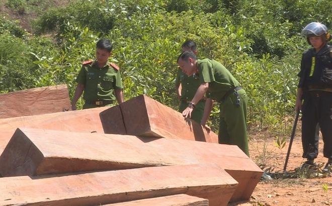 4 cán bộ phân trường bị tạm giam vì để lâm tặc vào rừng khai thác gỗ trái phép