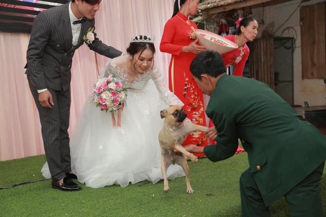 Chú chó lao lên sân khấu đòi chụp ảnh với cô dâu nhưng bị bế xuống, vẻ mặt khiến tất cả không thể nhịn cười - Ảnh 1.