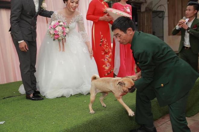 Chú chó lao lên sân khấu đòi chụp ảnh với cô dâu nhưng bị bế xuống, vẻ mặt khiến tất cả không thể nhịn cười - Ảnh 2.