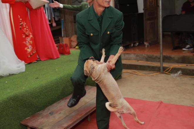 Chú chó lao lên sân khấu đòi chụp ảnh với cô dâu nhưng bị bế xuống, vẻ mặt khiến tất cả không thể nhịn cười - Ảnh 3.
