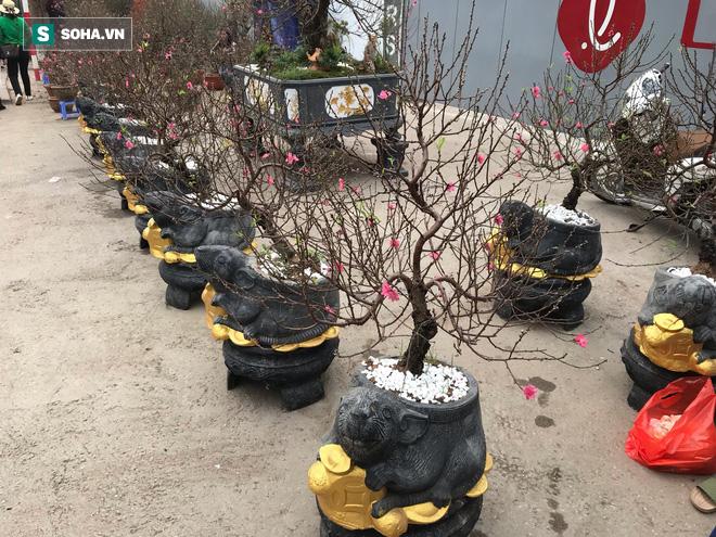 Chuột đen cưỡi vàng cõng hoa đào giá 2 triệu đồng hút khách dịp Tết 2020 - Ảnh 4.