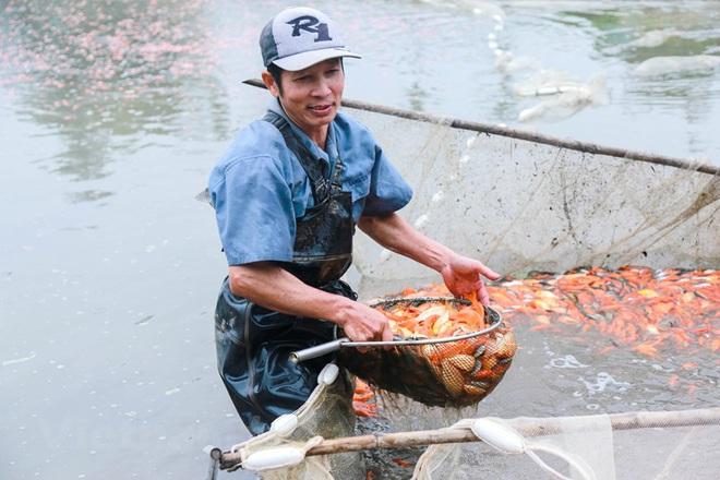 Làng nghề cá chép đỏ Thủy Trầm tất bật trước ngày ông Công ông Táo - Ảnh 12.