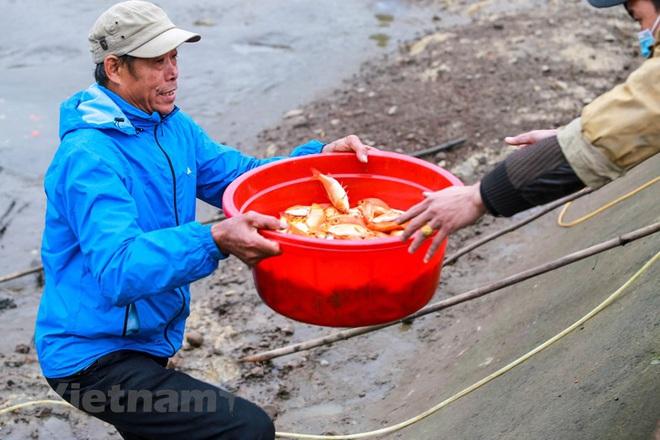 Làng nghề cá chép đỏ Thủy Trầm tất bật trước ngày ông Công ông Táo - Ảnh 13.