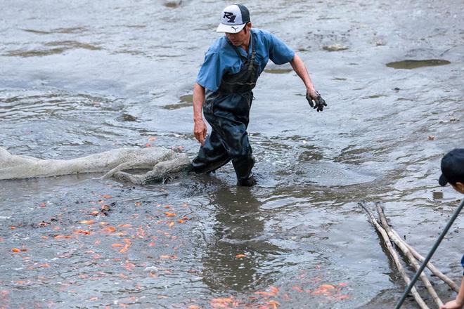 Làng nghề cá chép đỏ Thủy Trầm tất bật trước ngày ông Công ông Táo - Ảnh 3.