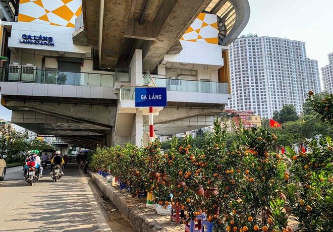 Cận cảnh nhà ga đường sắt Cát Linh - Hà Đông thành chợ cây cảnh - Ảnh 6.