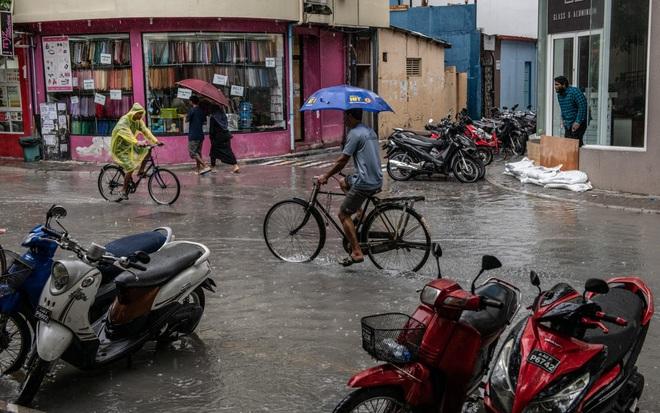 24h qua ảnh: Ngư dân Trung Quốc thu hoạch cá vào mùa đông - Ảnh 6.