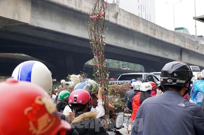 Người dân chở đào, quất về quê đón Tết, đường phố Hà Nội tê liệt - Ảnh 9.