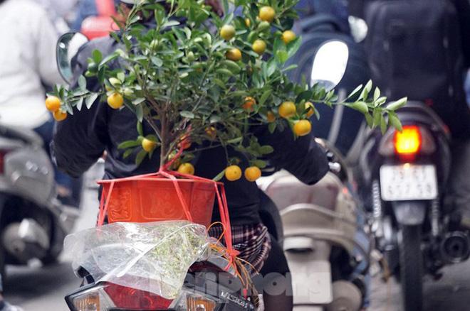 Người dân chở đào, quất về quê đón Tết, đường phố Hà Nội tê liệt - Ảnh 10.